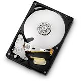 "160GB Hitachi CinemaStar 5K1000 HCS5C1016CLA382 8MB 3.5"" (8.9cm) SATA 3Gb/s"