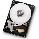 """500GB Hitachi Deskstar 7K1000.D 0F13178 32MB 3.5"""" (8.9cm) SATA 6Gb/s"""